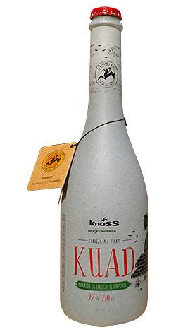 ficha-kuad