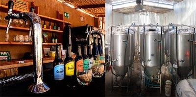 Tour Cervecería Guayacán