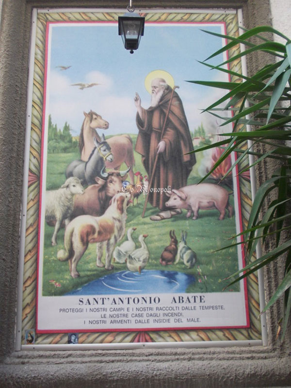 santantonio-abate-protettore-animali-2-fileminimizer