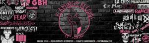 flamingo-banner