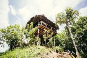 Journey Hostel Tayrona Colombia