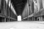 Blenheim Covered Bridge 3