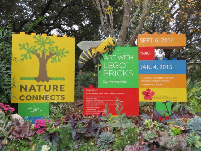 The San Antonio Botanical Garden