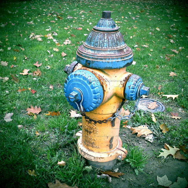 Yellow And Blue Fire Hydrant