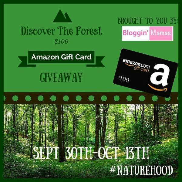 Enter to win a $100 Amazon Gift Card - Ends 10/13