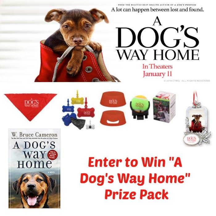 A Dog's Way Home Prize Pack Giveaway Ends 1/18/19 Good luck from Tom at Tom's Take On Things