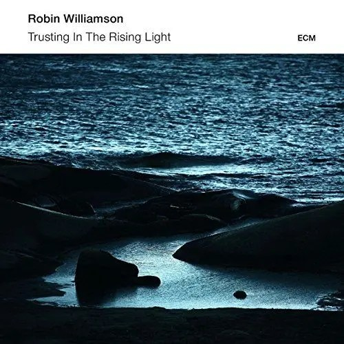 robin williamson trusting