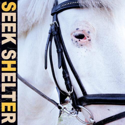 Recensione: Iceage – Seek Shelter