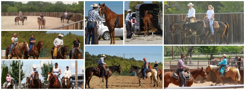 Horse Clinics with Tom Davis