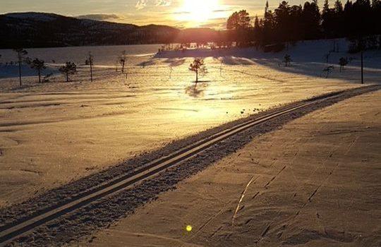 Informasjon om skiløypekjøring på Tomtvatnet vinteren 2018