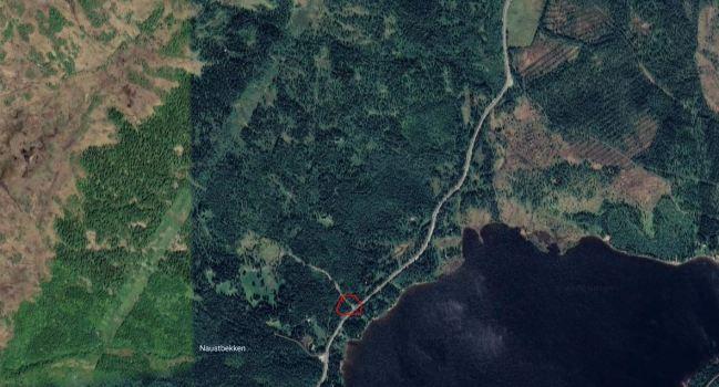 AVLYST:    Rydding av den gamle setervegen mellom Lavøya og Reistadbustaden