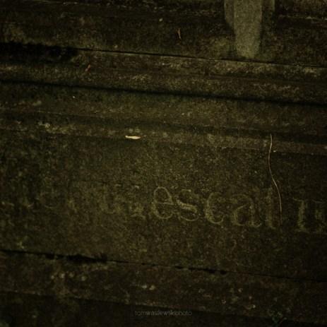 cosel_cemetery_1_04