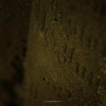 cosel_cemetery_1_11
