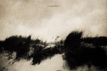 northern_wind_07