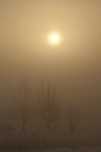 sun_eclipse_1_10