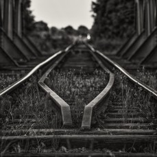 schwarz-weiß-welt_13