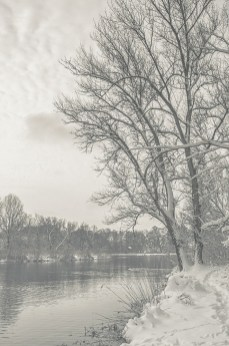 winter_fell_09
