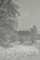 winter_fell_20