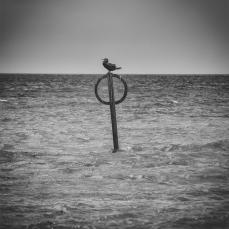 seastories_03