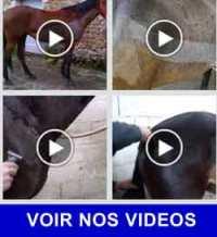 Tondeuse Liveryman vidéos