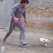 25022014: Esci di casa ed emuli Rocky con la gallina
