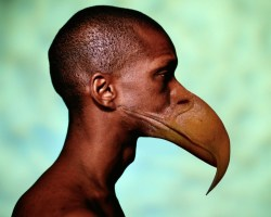 150224_birdman-770x616