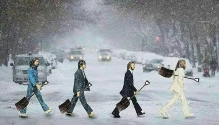 abbey road parody snow