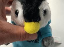 Ein tanzender Pinguin jetzt bei Tonerdumping