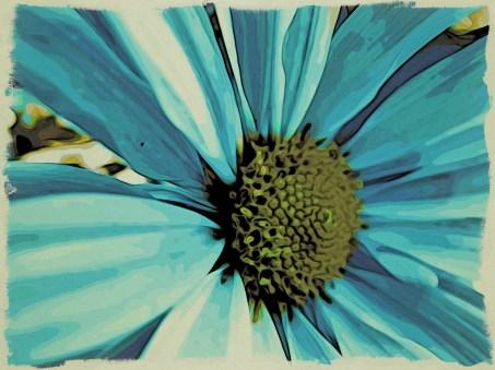 Blue Flower CU
