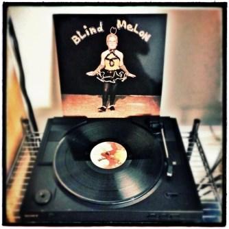 Blind Melon, Vinyl, Album