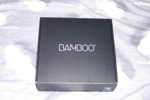 The box inside the Bamboo Fun box