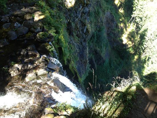 Multnomah Falls top