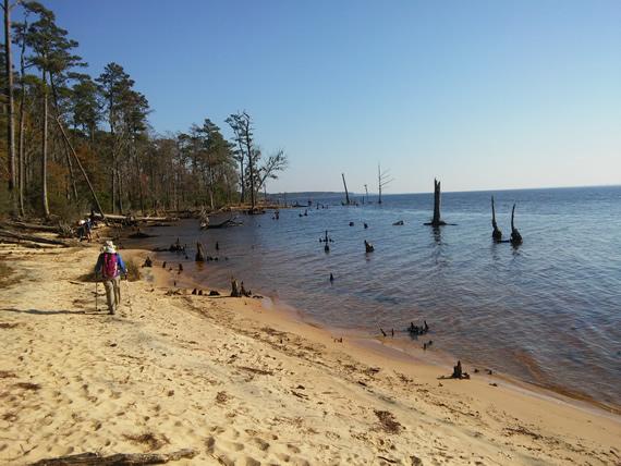 Goose Creek State Park beach
