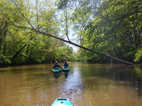Tar River kayaking
