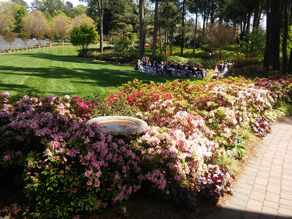 WRAL Azalea Garden wedding