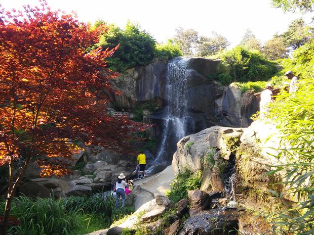 Maymont garden