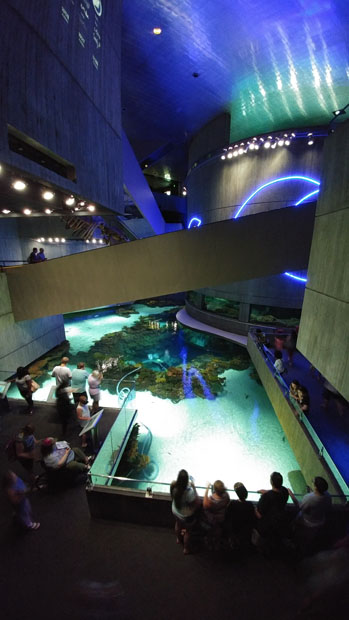 Baltimore National Aquarium
