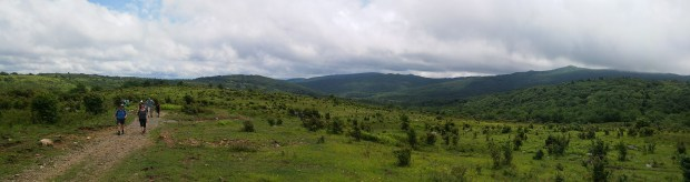Grayson Highlands State Park pano