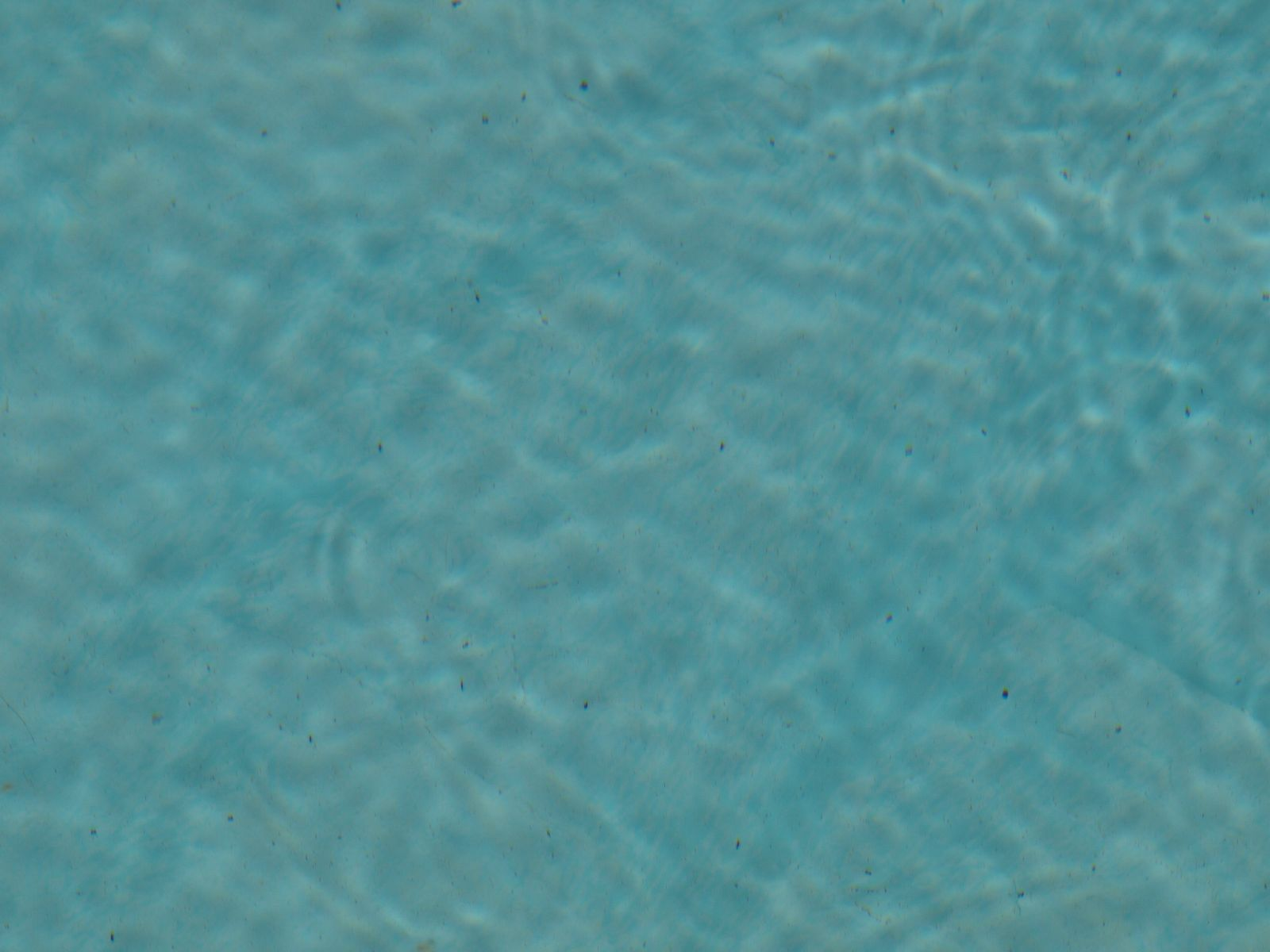 Free Water Texture Photo Gallery
