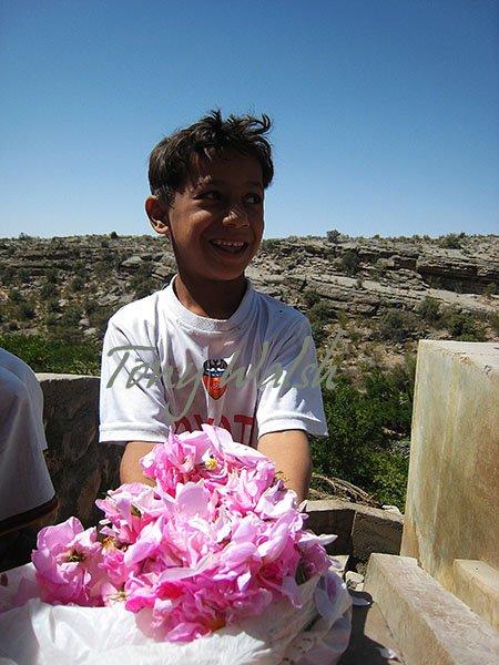 Jabal Akhdar Roses