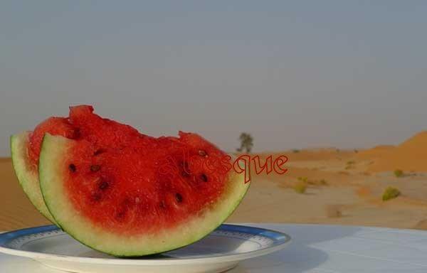 Desert Watermelon