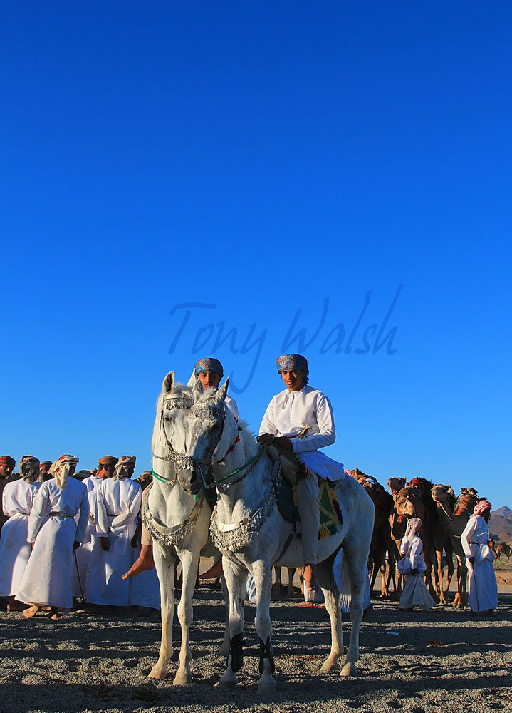 Horse Event in Oman Tour in Oman over Christmas
