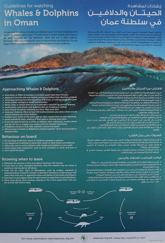 Dolphin watching guidelines for Oman