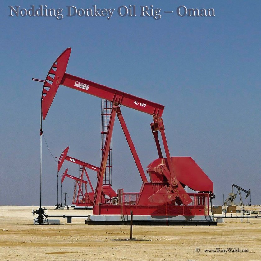 Nodding Donkey Oil