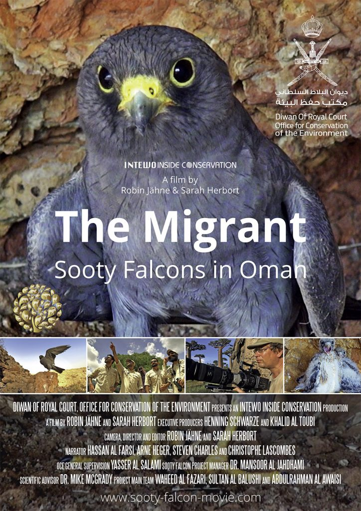 Sooty Falcon Film Poster