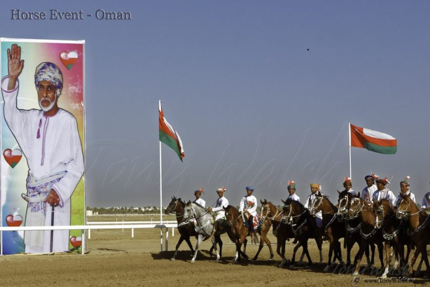 Horse Event - Oman 10 reasons to visit muscat this winter