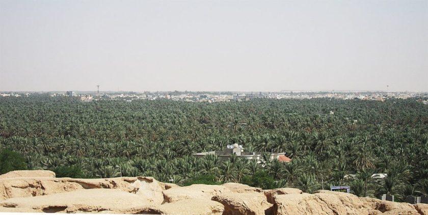 Al-Ahsa Date Oasis - കാക്കര