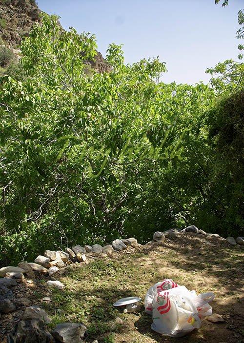 Picnic in Wadi bani Habib
