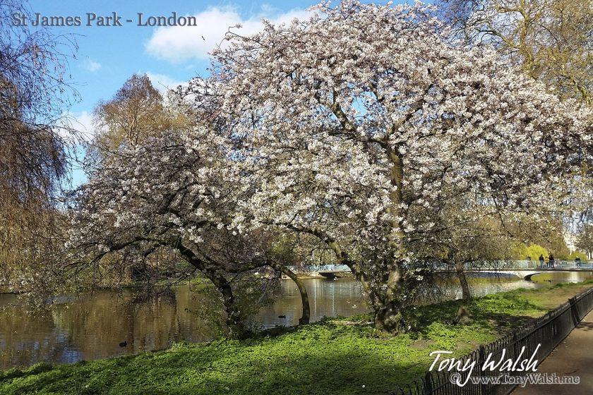 St James Park - London