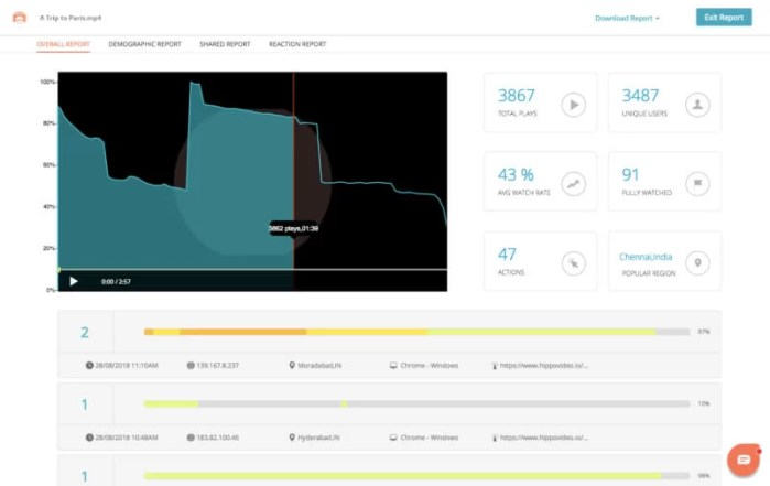 Hippo Video analytics